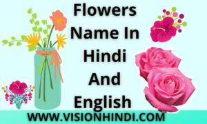 Flowers Name in Hindi And English With Picture। 50 Best फूलों के नाम