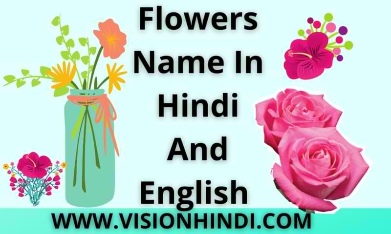 Flowers Name In Hindi And English With Pictures