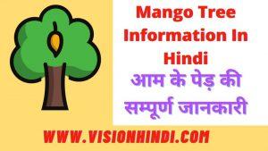 Mango Tree Information In Hindi – आम के पेड़ की सम्पूर्ण जानकारी